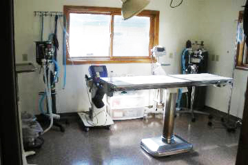 Pet Surgery Table